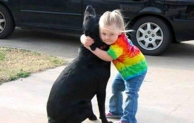 Foto que acompaña el relato / internet,perra Abbey, Dios