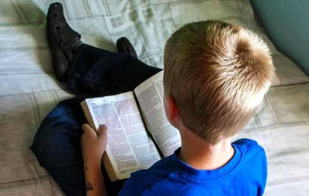 ,biblia, niño