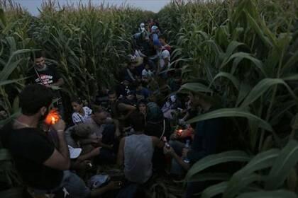 Un grupo de refugiados espera en la frontera en Horgos, cerca de la frontera entre Serbia y Hungría. Foto: elperiodico.com