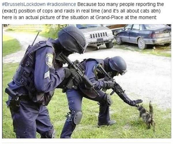 Un post de un usuario de facebook hace unas noches después de que la policía belga pidiera discreción en el trato de las operaciones policiales. Los usuarios de los medios de las redes sociales respondieron con imágenes de gatos. / Facebook ,