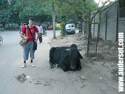 Alain en India