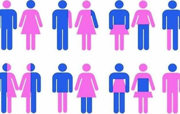 ,ideología género