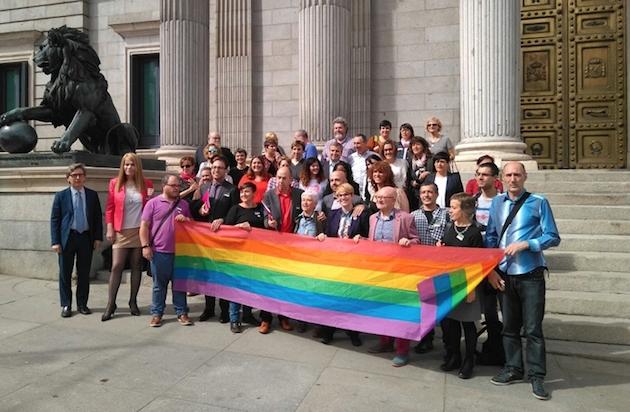 Representantes del colectivo LGTBI y políticos, frente al Congreso, esta semana. / FELGTB,FELGTB