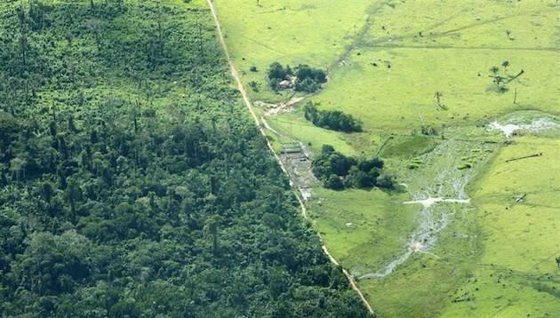 Deforestación de la Amazonía en Brasil.,cambio climatico