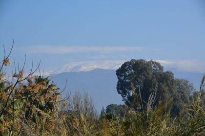Nieves del monte Hermón visto desde el norte de Galilea.