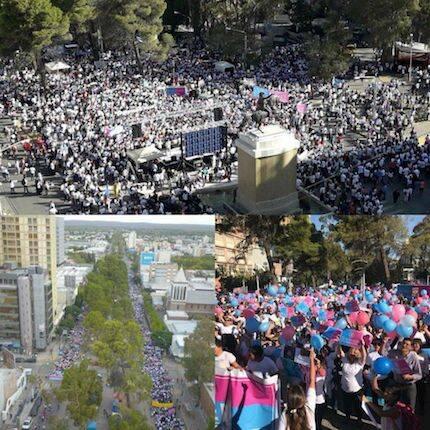 Imágenes de las marchas de Río Negro y Neuquén. / Fb Grupo Marcha por la vida Argentina
