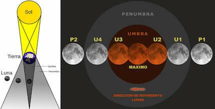 Diagrama de un eclipse lunar y nombres que reciben las etapas o contactos con la penunbra o umbra: P1 (primer contacto, comienzo del eclipse penumbral), U1 (segundo contacto, comienzo del eclipse parcial), U2 (tercer contacto, comienzo del eclipse total), máximo del eclipse (etapa de mayor ocultación), U3 (cuarto contacto, fin del eclipse total), U4 (quinto contacto, fin del eclipse parcial), P2 o P4 (sexto contacto, fin del eclipse penumbral). / Luca/Thóumas/SINC