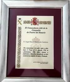 El diploma entregado