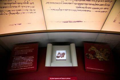 Cinco de lo dieciséis rollos del Mar Muerto que contiene el museo son falsos. / Museo de la Biblia