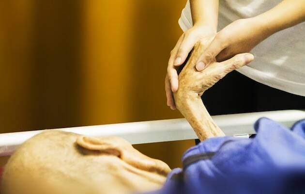 La AEE defiende un desarrollo de los cuidados paliativos. / Pixabay (CC0),