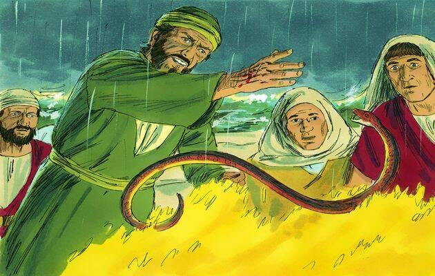 Pablo, haciendo un movimiento brusco, hecha la víbora en el fuego. /Free Bible images (CC),
