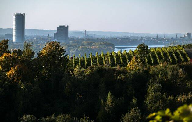 Vista de la ciudad de Bonn, donde se ubicará el centro de sostenibilidad de la WEA. / WEASC,