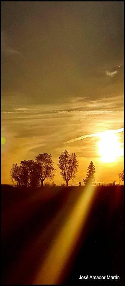 Todo es luz en este instante, de Elena Díaz Santana