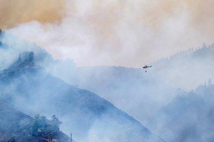 Cerca de un millar de personas trabajan en la extinción del fuego. / Twitter @RTVCes