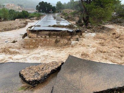 El desbordamiento del río Segura ha provocado inundaciones en localidades, cultivos y el corte de carreteras. / À punt